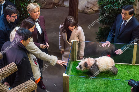 Brigitte Macron (2-L) wife of french president and Zhang Yesui (R), Chinese executive vice foreign minister and other french and chinese officials at the Beauval zoo during a naming ceremony of the newborn baby panda 'Yuan Meng'  in Saint-Aignan-sur-Cher, central France, 04 December 2017. As ?first lady?, Mrs Macron shares godmother duties with the wife of the Chinese president.