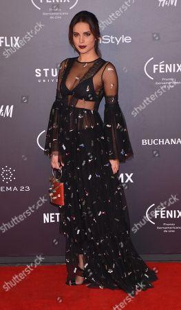 Editorial picture of Fenix Film Awards, Mexico City, Mexico - 06 Dec 2017