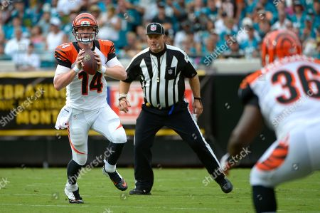 Andy Dalton, Chris Pressley, Rich Hall. Cincinnati Bengals quarterback Andy Dalton (14) rolls out to pass to fullback Chris Pressley (36) as umpire Rich Hall, center, watches during the first half of an NFL football game against the Jacksonville Jaguars in Jacksonville, Fla