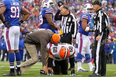 Editorial photo of Browns Bills Football, Orchard Park, USA - 30 Nov 2014