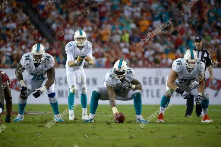 John Jerry, Mike Pouncey, Nate Garner, Ryan Tannehill. Miami Dolphins guard John Jerry (74), center, Mike Pouncey (51) and guard Nate Garner (75) set up to block as quarterback Ryan Tannehill (17) prepares to take the snap during the second half of an NFL football game against the Tampa Bay Buccaneers in Tampa, Fla