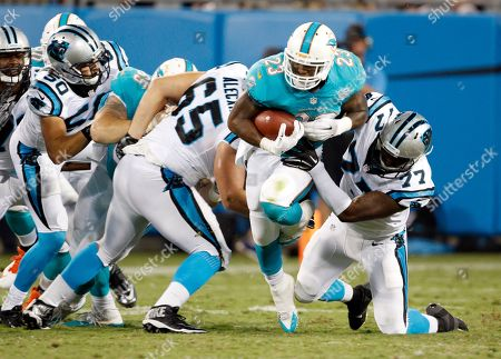 Editorial photo of Dolphins Panthers Football, Charlotte, USA - 22 Aug 2015