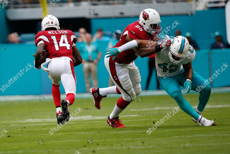 J.J. Nelson, Spencer Paysinger, Darren Fells. Arizona Cardinals wide receiver J.J. Nelson (14) runs for the end zone for a touchdown as tight end Darren Fells (85) defends Miami Dolphins linebacker Spencer Paysinger (42), during the first half of an NFL football game, in Miami Gardens, Fla