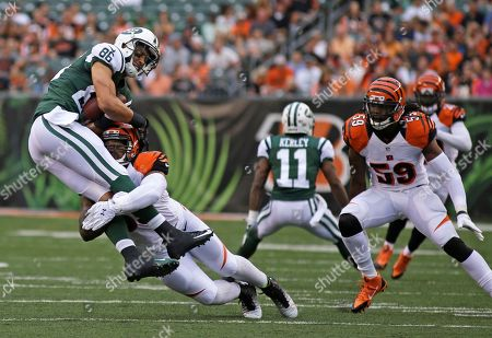 Emmanuel Lamur, David Nelson, Vontaze Burfict. Cincinnati Bengals outside linebacker Vontaze Burfict (55) tackles New York Jets wide receiver David Nelson (86) in the first half of an NFL preseason football game, in Cincinnati. Emmanuel Lamur (59) pursues
