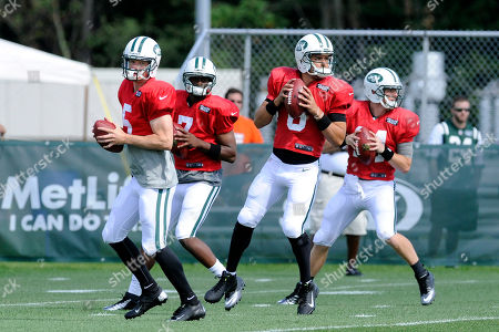 Mark Sanchez, Geno Smith, Greg McElroy, Matt Simms. From left, New York Jets quarterbacks Matt Simms, Geno Smith, Mark Sanchez, and Greg McElroy drop back at their NFL football training camp, in Cortland, N.Y