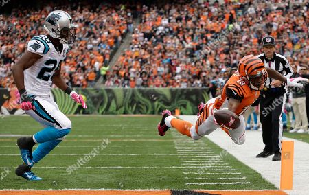 Antoine Cason, Brandon Tate. Cincinnati Bengals wide receiver Brandon Tate (19) dives into the end zone for a touchdown against Carolina Panthers cornerback Antoine Cason (20) in the first half of an NFL football game, in Cincinnati