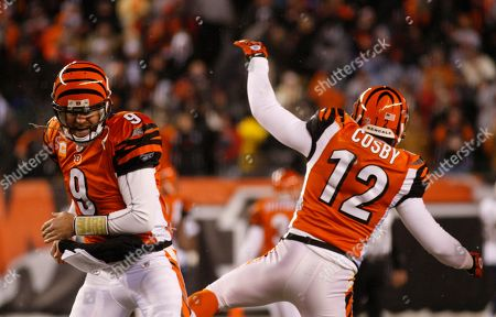 Carson Palmer, Quan Cosby. Cincinnati Bengals quarterback Carson Palmer (9) and wide receiver Quan Cosby (12) celebrate in the second half of an NFL football game against the San Diego Chargers, in Cincinnati