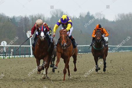 MOTOWN MICK (centre yellow) ridden by Timmy Murphy battles it out with Roseau City (maroon) before winning The 32Red.com Nursery Handicap Stakes at Lingfield
