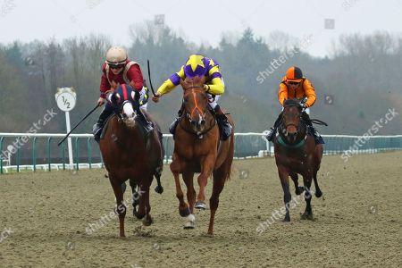 MOTOWN MICK (centre yellow) ridden by Timmy Murphy beating Roseau City (maroon) in The 32Red.com Nursery Handicap Stakes at Lingfield