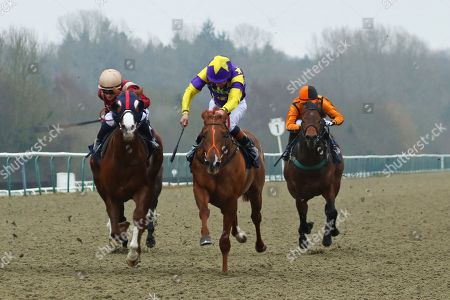 Stock Picture of MOTOWN MICK (centre yellow) ridden by Timmy Murphy beating Roseau City (maroon) in The 32Red.com Nursery Handicap Stakes at Lingfield