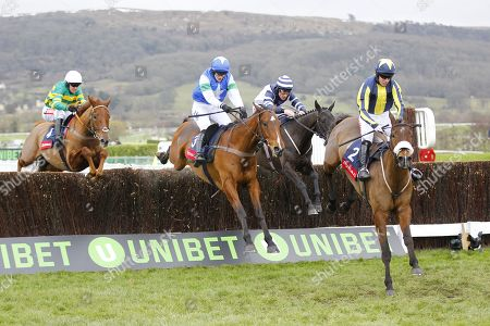 Kalondra and Noel Fehily [right] win the Ryman Novices' Chase at Cheltenham for trainer Neil Mulholland from l-r Movewiththetimes, Coo Star Sivola and Jameson.