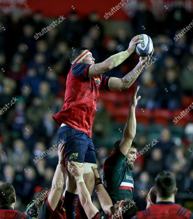 Stock Photo of Leicester Tigers vs Munster. Munster's Peter O'Mahony wins a line out ahead of Michael Fitzgerald of Leicester