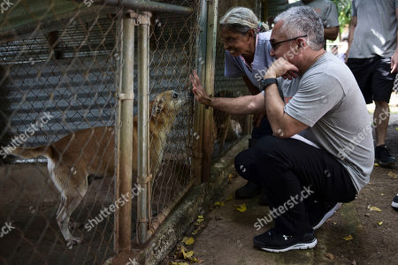 """Dog trainer Cesar Millan who's known for his TV show """"Dog Whisperer,"""" right, and Carmen Cintron, founder of Canita Sanctuary, interact with a rescue dog at the shelter that protects hundreds of cats and dogs from being euthenized in Guayama, Puerto Rico. While there are no official figures, and estimates vary wildly, activists say that the number of stray animals increased after the hurricane because many shelters were closed"""