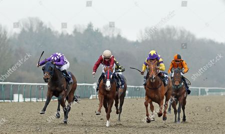 MOTOWN MICK (right, Timmy Murphy) beats ROSEAU CITY (centre) and THE MUMS (left) inThe 32Red.com Nursery Lingfield