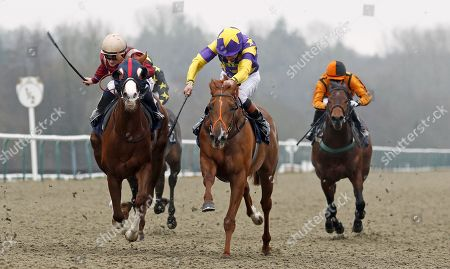 Editorial image of Horse Racing - 20 Dec 2017