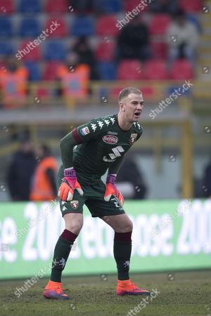 Stock Photo of Joe Hart (Torino)