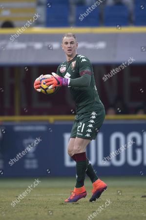 Editorial photo of Bologna v Torino, Serie A football match, Stadio Renato Dall'Ara, Italy - 22 Jan 2017