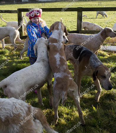 Stock Image of 6 year old Sydney Tayor meets the hounds The Vine and Craven Boxing day meet in Lambourn,Berkshire.