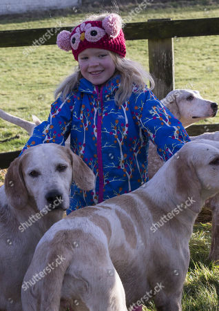 Stock Picture of 6 Year old Sydney Taylor meets the hounds at The Vine and Craven Boxing day meet in Lambourn,Berkshire.
