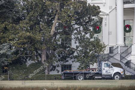Jackson Magnolia Tree Removed White House Stock Photos Exclusive