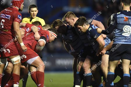 Matthew Rees and Brad Thyer of Cardiff Blues.