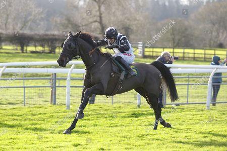 Editorial photo of Horse Racing - 04 Jan 2017