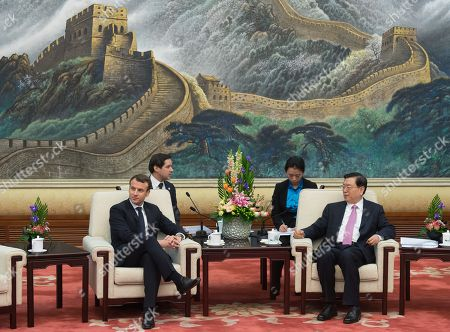 Emmanuel Macron and Zhang Dejiang