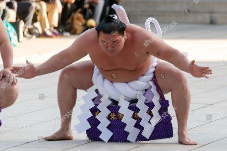 Sumo wrestler Hakuho Sho performs the Dezuiri, ring-entering ceremony, at the Meiji Shrine, Tokyo, Japan.
