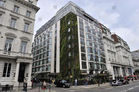 The Athenaeum hotel living wall. London, England, Britain.