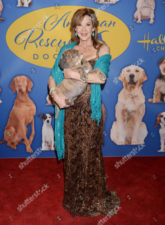 Editorial image of American Rescue Dog Show, Pomona, USA - 14 Jan 2018