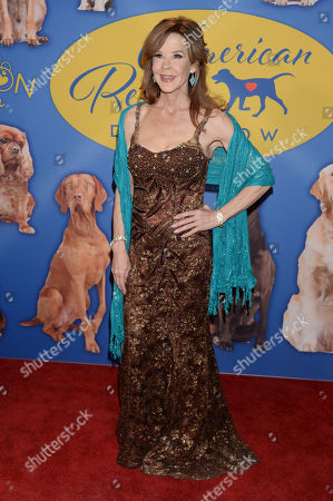Editorial photo of American Rescue Dog Show, Pomona, USA - 14 Jan 2018