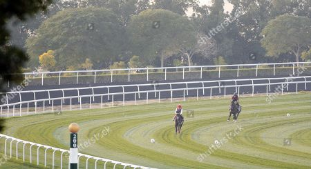 PRINCE OF ARRAN, trained by Charlie Fellowes, leading THUNDERBOLT ROCKS, trained by Hugo Palmer, exercising in preparation for The Dubai World Cup Carnival, Meydan