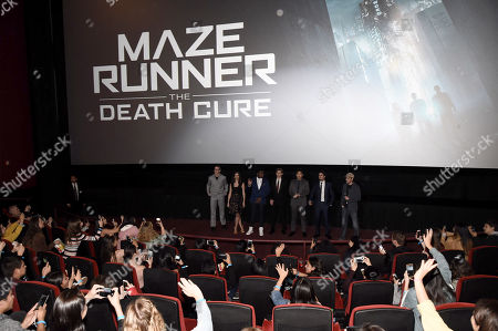 Will Poulter, Kaya Scodelario, Dexter Darden, Thomas Sangster, Ki Hong Lee, Dylan O'Brien, Wes Ball, Director,