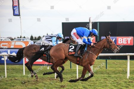 Maria's Benefitthe ridden by Ciaran Gethings and trained by  Stuart Edmunds runs on to win the 14:40 Olbg.Com Yorkshire Rose Mares' Hurdle ;Sky Bet Chase at Doncaster Racecourse