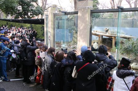People enjoy to see female giant panda cub Xiang Xiang and her mother Shin Shin displayed on a playground