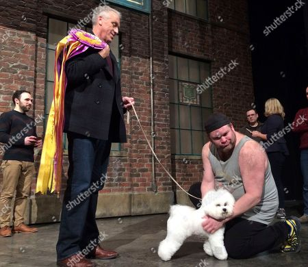 Editorial image of Westminster Dog Show Winner's Day, New York, USA - 14 Feb 2018
