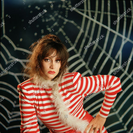 Stock Photo of Holly Knight - Spider