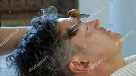Stock Picture of Sid Owen gets a snail facial