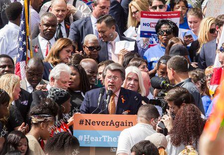 Sen. Gary Farmer Jr., Rally for Gun Reform. Florida Sen. Gary Farmer Jr. speaks at the Rally for Gun Reform on the steps of the old Florida Capitol in Tallahassee, Fla., . Several hundred protesters have arrive an hour before the start of the rally