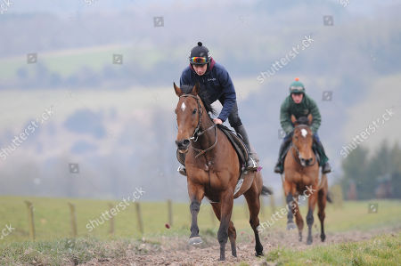 Nigel Twiston-Davies Stable Visit. Grange Hill Farm. The New One canters out during the stable visit.