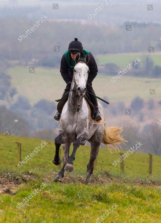 . Cheltenham Press Day. Grange Hill Farm. Nigel Twiston-Davies. Bristol de Mai in action