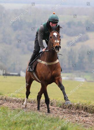 . Cheltenham Press Day at Grange Hill Farm. Nigel Twiston-Davies. Wholestone in action on the gallops.