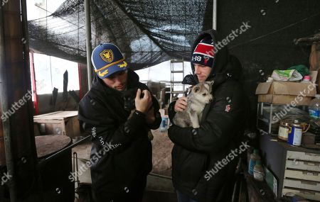 Gus Kenworthy, Matthew Wilkas. American freestyle skier Gus Kenworthy, left, and his boyfriend Matthew Wilkas hold dogs at a dog meat farm in Siheung, South Korea. Kenworthy saved five stray dogs during the Sochi Olympics four years ago and is considering adopting one of the many puppies he met Friday after finishing competition the Pyeongchang Games