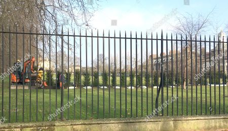 Stock Picture of Kensington Green The Side Lawn To Kensington Palace And Adjacent To The Secure Embassy Filled Road Kensington Palace Gardens Where A New Line Of Fir Trees Is Being Planted Ahead Of The Return Of Prince William And His Family See Richard Kay Story Note: This Picture Taken Through The Railings (shown) From A Footpath Linking The Public Road And The Park  27117