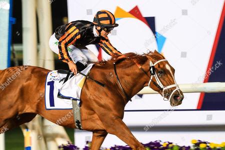Stock Image of Rayya ridden by Pat Dobbs wins the UAE Oaks (Group 3) Sponsored By Al Naboodah Construction Group, race 3, at Meydan Dubai World Cup Carnival.