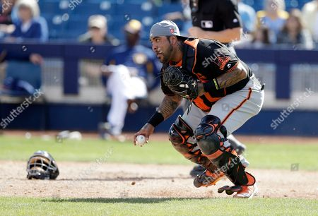 San Francisco Giants catcher Hector Sanchez chases the loose ball during the third inning of a spring training baseball game against the Milwaukee Brewers, in Maryvale, Ariz
