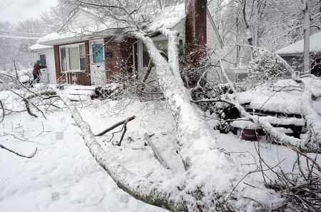 Brian Farrell, of Walpole, Mass., left, enters his home, after a tree fell on the house and a car, right, in Walpole. For the second time in less than a week, a storm rolled into the Northeast with wet, heavy snow Wednesday and Thursday, grounding flights, closing schools and bringing another round of power outages to a corner of the country still recovering from the previous blast of winter