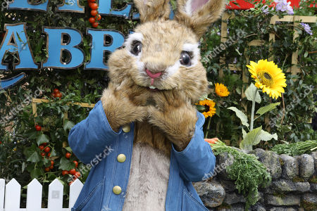 Character Peter Rabbit poses for photographers on arrival at the premiere of the film 'Peter Rabbit', in London