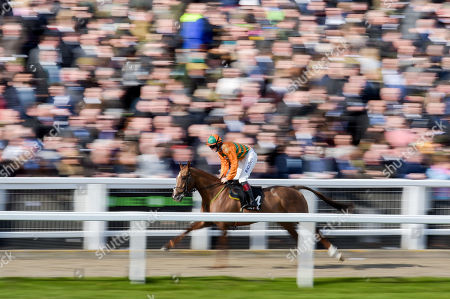 Robinshill trained by Nigel Twiston-Davies and ridden by Sam Twiston-Davies in action as he runs past the crowd in the Racing Post Arkle Challenge Trophy Steeple Chase
