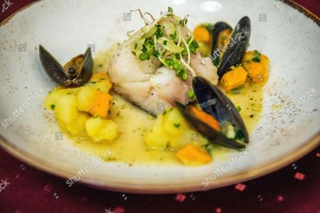 Stock Image of A seafood dish is presented during the final round of the Eastern European section of the Olivier Roellinger chef competition in the training kitchen of the College of Commerce, Catering and Tourism of the Budapest Business School (BBS) in Budapest, Hungary, 13 March 2018. The Olivier Roellinger contest aims to bring together young chefs and students trained in the catering sector and encourage them to promote the preservation of marine resources through the use of sustainable species for fish and seafood dishes.